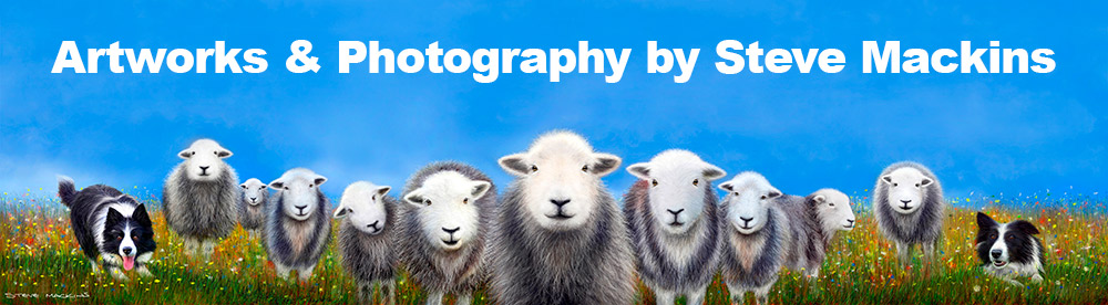 Comforting Ewe Art Prints on Canvas & Photopaper